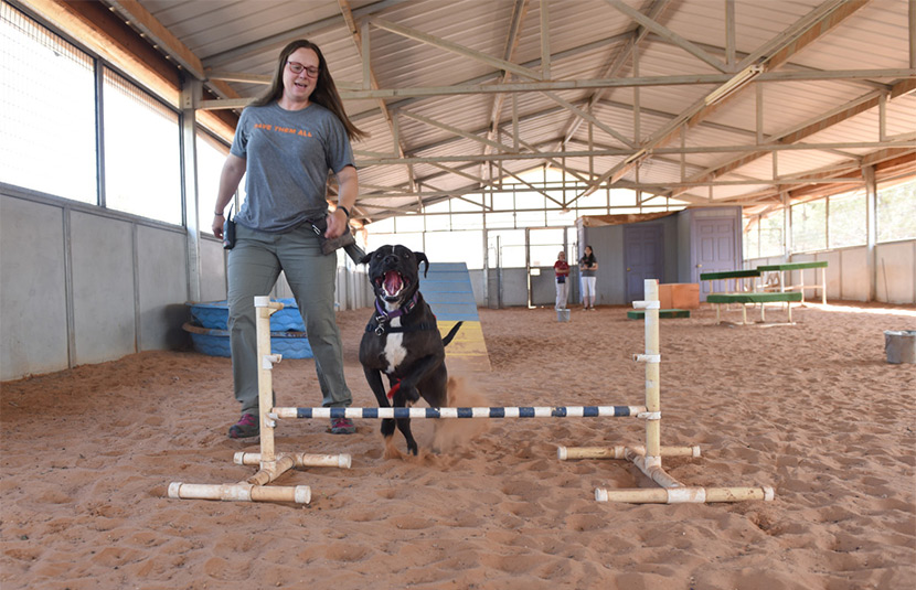 Sosa jumps a hurdle